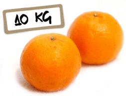 Mandarina 10 kg